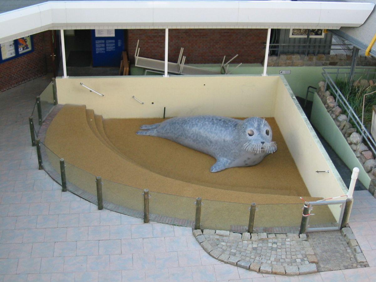 Kurts Platz im neuen Eingangsbereich, wo einst das Seehundbecken war