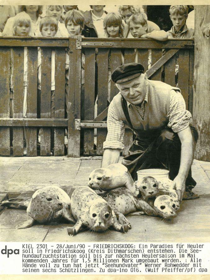 """Werner """"Polli"""" Rohwedder ist der erste Stationsleiter der Seehundstation Friedrichskoog"""