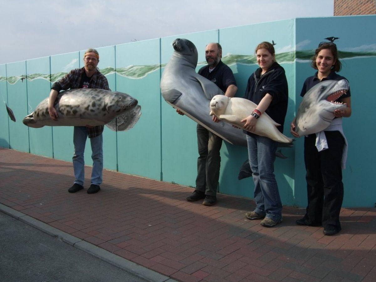 """Die """"Robben der Welt"""" ziehen in das Neue Informationszentrum ein"""