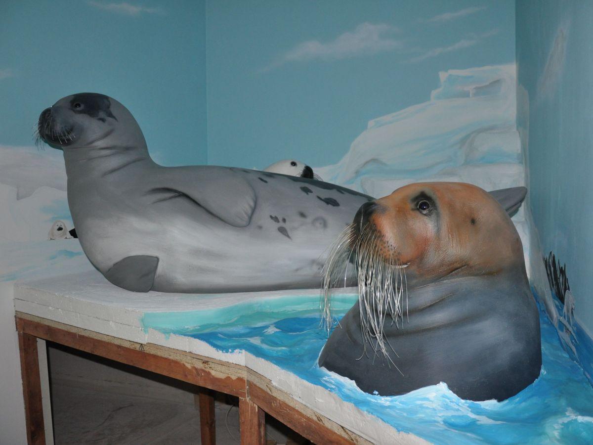 Die Robben der Arktis in ihrer fast fertigen Themenkammer