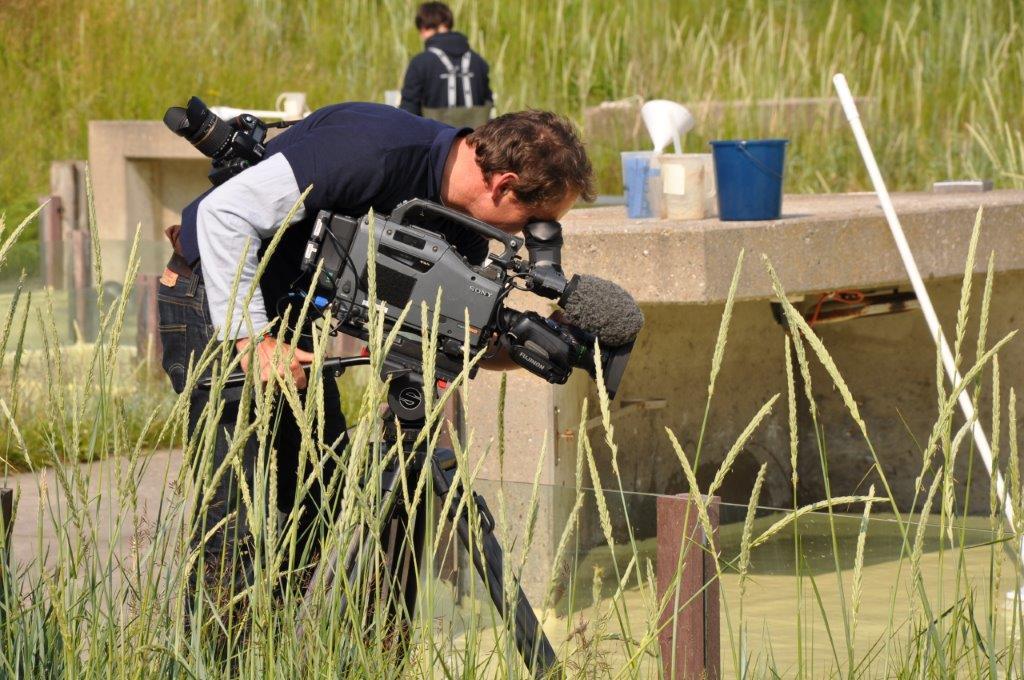 """Drehbeginn von """"Seehund, Puma und Co."""" in der Seehundstation. Insgesamt werden 215 Folgen produziert"""